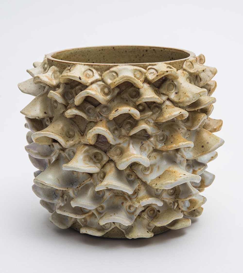 2016Honors_Vessel with Ruffles (KSwitzer).bmp