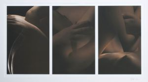 Artist Kelly Agall UNTITLED TRIPTYCH 2009 Digital mixed media print Clover Award Purchase Art Student Honors Exhibition 2009 S.408.09.PH
